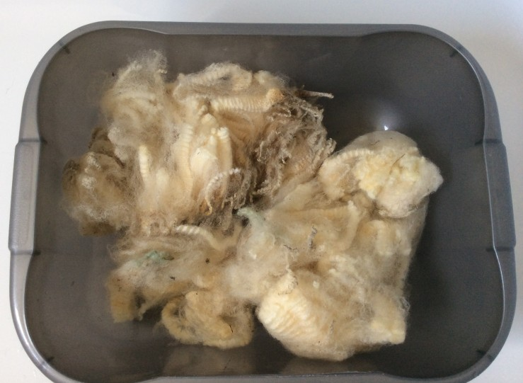 fleece-washing